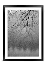 Snow and tree., Framed Mounted Print
