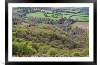 Exmoor woods, Framed Mounted Print