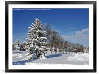 After the Snow 2, Framed Mounted Print