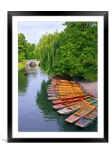 Punting On The River Cam At Cambridge, Framed Mounted Print