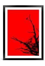 Bird In Tree., Framed Mounted Print