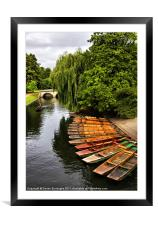 Punting On The Cam, Cambridge., Framed Mounted Print