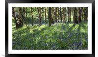Springtime In Ilkley, Framed Mounted Print