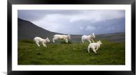 An Evening's Frolic In The Dales Onset, Framed Mounted Print