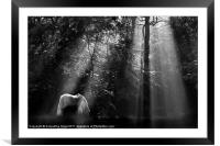 Tranquility, Framed Mounted Print