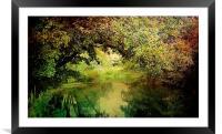 Autumn Walks.., Framed Mounted Print
