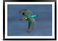 On a mission., Framed Mounted Print