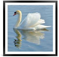 Water Angel, Framed Mounted Print