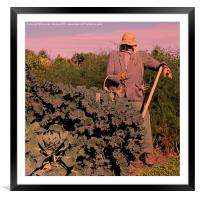Scarecrow at Sunset, Framed Mounted Print