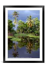 Palm Trees in a Storm Kerala, Framed Mounted Print