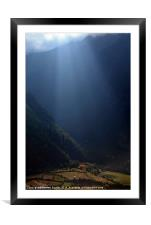 Fields Highlighted by Sunlight Pisang, Framed Mounted Print