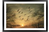 AUTUMN SUNSET, Framed Mounted Print