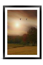SOME DAYS ARE BETTER THAN OTHERS, Framed Mounted Print