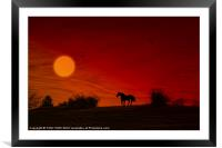 WILD AND FREE, Framed Mounted Print