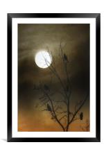ONE MOONLIT NIGHT, Framed Mounted Print