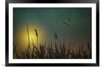 CHASING THE SUN, Framed Mounted Print