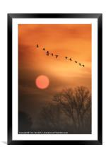 HOT SUMMER FLIGHT, Framed Mounted Print
