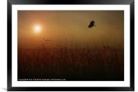 IN THE FIELD, Framed Mounted Print