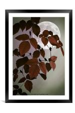 IN THE AUTUMN MOONLIGHT, Framed Mounted Print