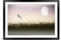 ABOVE THE TALL GRASS, Framed Mounted Print