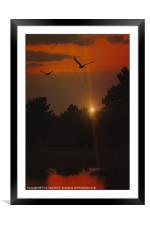 A TWILIGHT FLIGHT, Framed Mounted Print
