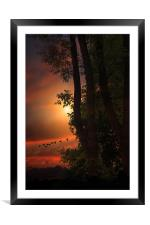 LATE AUGUST SUNSET, Framed Mounted Print