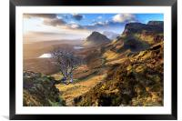 Quiraing Tree, Framed Mounted Print