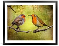 Robin Gifts, Framed Mounted Print