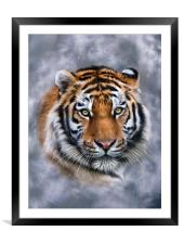 Sky Tiger, Framed Mounted Print