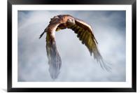 Flight of Fancy, Framed Mounted Print