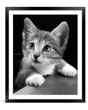 You what!!!, Framed Mounted Print
