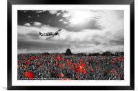 Spitfire Poppy Pass, Framed Mounted Print