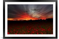 A Poppy Field Dream , Framed Mounted Print