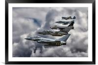 RAF Family Tree , Framed Mounted Print