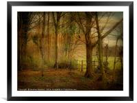 Winter Woodland., Framed Mounted Print