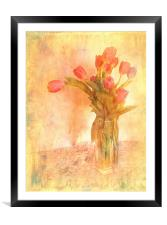 Tulip Time, Framed Mounted Print