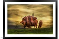 Heads or Tails, Framed Mounted Print