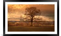 The Lone Tree, Framed Mounted Print