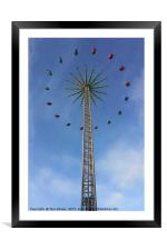 Star Flyer, Framed Mounted Print
