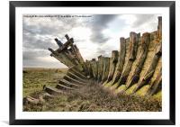 Rotting Ribs., Framed Mounted Print