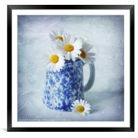Daisies in a blue Jug, Framed Mounted Print
