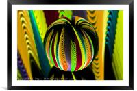 Variation in the glass globe., Framed Mounted Print