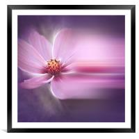 A Perfect Dream, Framed Mounted Print