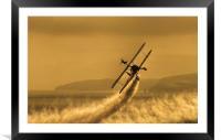 Wing Walker, Framed Mounted Print