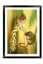 Harvest Mice, Framed Mounted Print