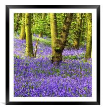 If you go down to the Woods, Framed Mounted Print