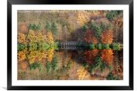 Autumn in Derwent, Framed Mounted Print