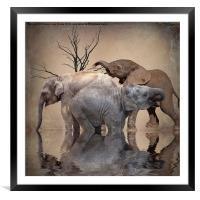 The Herd, Framed Mounted Print