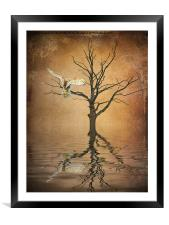 Golden Owl, Framed Mounted Print
