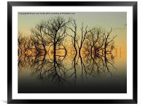 Silhouetted Grey, Framed Mounted Print